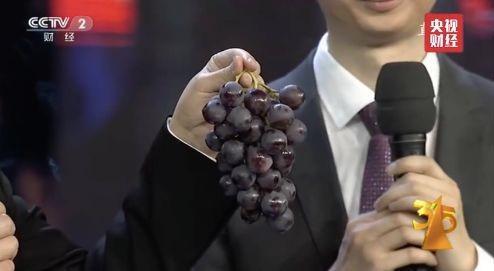 央视315晚会曝光的食品谣言