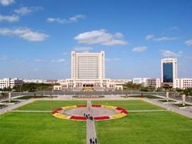 东营发全国首个数字文化广场建设和服务标准