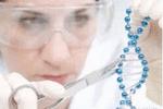 """""""基因剪刀""""成功阻止视网膜血管新生"""