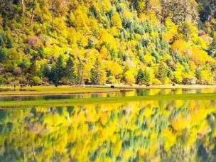 比九寨沟更美的四川古县 有世界上仅存的景观