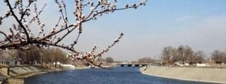 桃花堤公园提升工程5月完工 增建文化景观50处