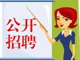 保定蠡县2017年公开招聘百名中小学教师