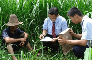 惠州法院推人员分类管理改革 一线办案法官人数增44%