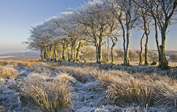 """在""""暖气""""陪伴下的过冬 在英国不是小事情"""