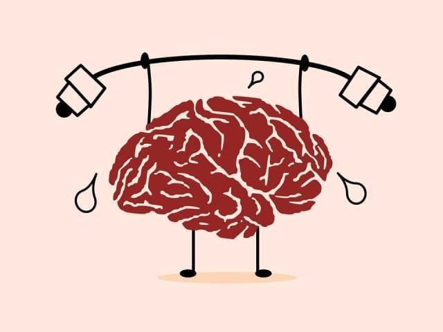 左撇子、大脑门、头顶两个旋儿 听说这些人更聪明?