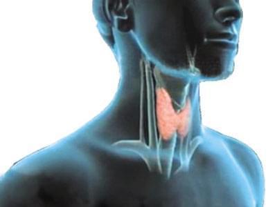 甲状腺疾病患者口服优甲乐需要注意哪些问题?