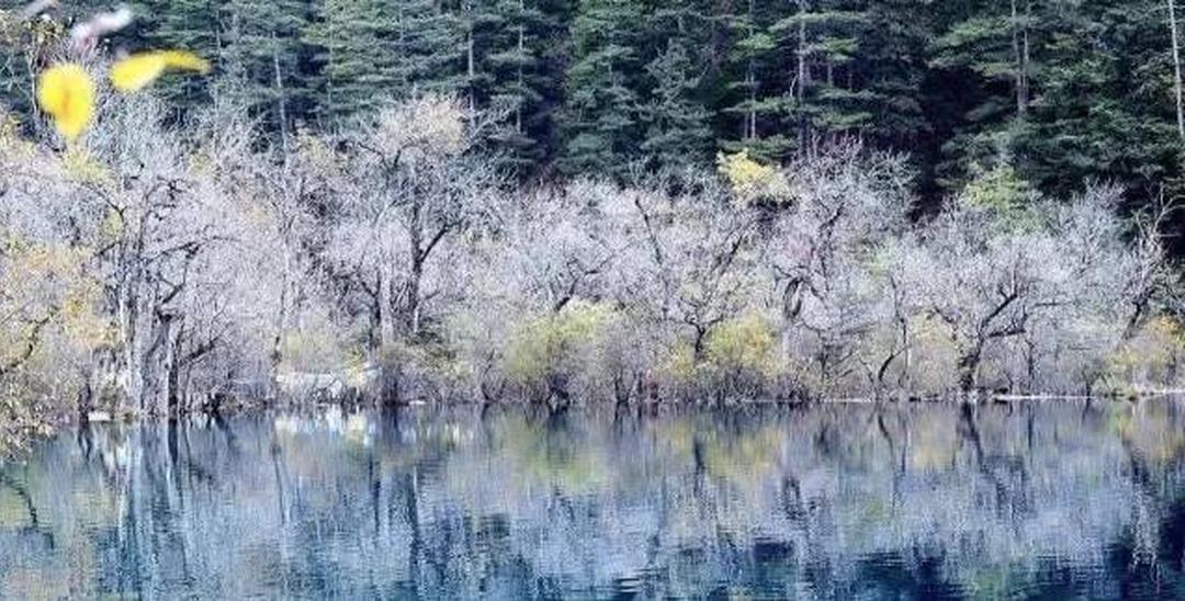 巴蜀圣地处处皆美景 来四川旅游一定要来这些地方