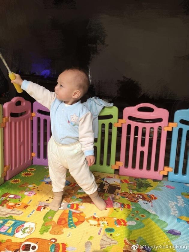谢杏芳晒儿子手握羽毛球拍照 姿势超标准