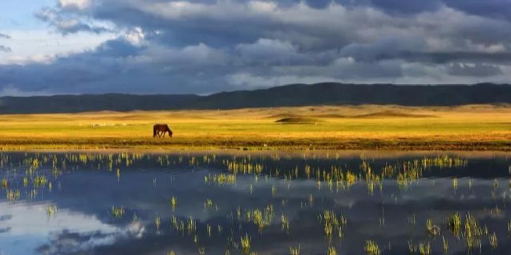 新疆美景丨藏在草原里的沙孜湖