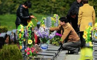 殡葬|沈阳将严查殡仪服务机构不明码标价 乱收费现象