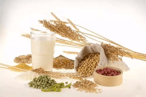尽量别掺绿豆、大米 喝豆浆有8个学问
