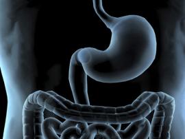 冬季养胃的方法 这些养胃秘诀要牢记