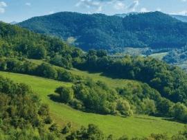 龙湖不做园林 只是复原自然的美