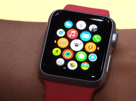Apple Watch主导市场 可穿戴设备未来光明