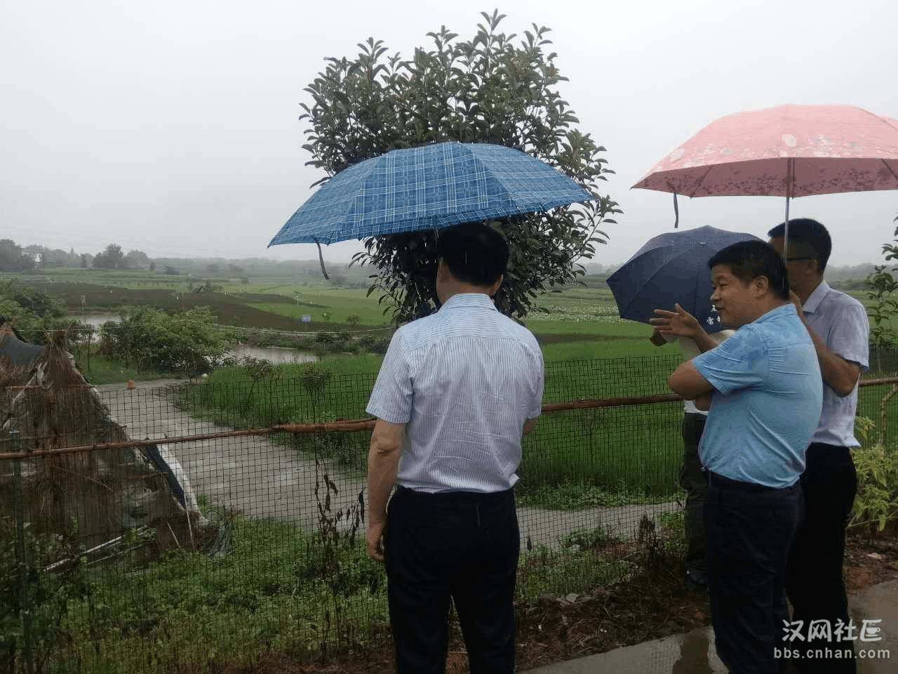 全国网媒荆州行走进石首 看青山绿水生态旅游城市