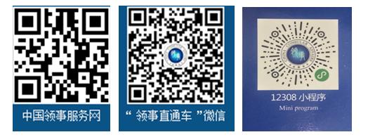 赵岩参赞:中国公民海外遇险 拨打12308能救命!