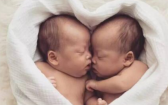 谢娜产下双胞胎女儿 双胞胎就非得是试管婴儿吗