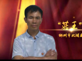 """""""菇王""""的扶贫情——北湖区最美扶贫人王利华"""