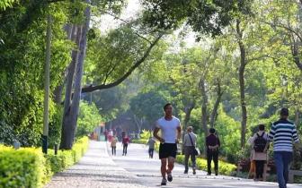"""红花绿树四季常春 这个公园吸引健身者在此""""扎根"""""""