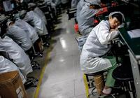 金立:刘立荣逆势投资非主业 赚了账面却断了资金