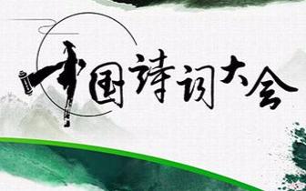 《中国诗词大会》新亮色:诗意无关职业 从来不晚