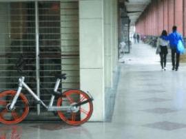 """共享单车成""""私家""""?小心罚到""""没车骑""""!"""