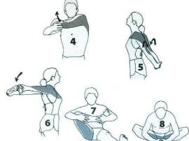 4大热门运动的最佳热身法