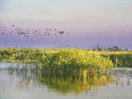 新疆有近30个国家湿地公园
