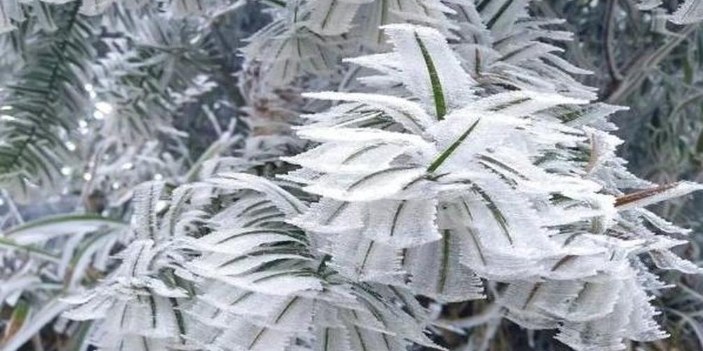 郴州各市县最全雪景都在这里了