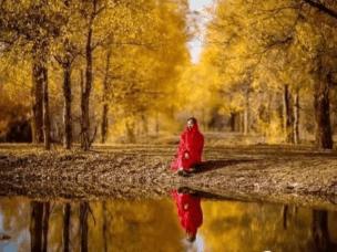 在哪里最能体会秋天的色彩,额济纳!