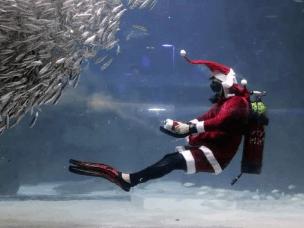 圣诞老人鹿不停蹄的工作,他究竟在忙啥?