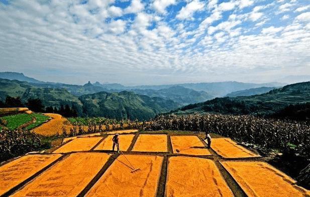 【焦点】土地收益不能漏掉农民 雄安模式值得点赞