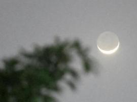 """唐山人今晚别睡了 24日凌晨或上演""""金星合月"""""""