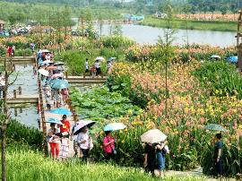 南宁那考河湿地公园游客如织 成市民端午出游热点