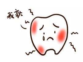 婆婆有病不医险丢性命 牙痛竟是心梗先兆
