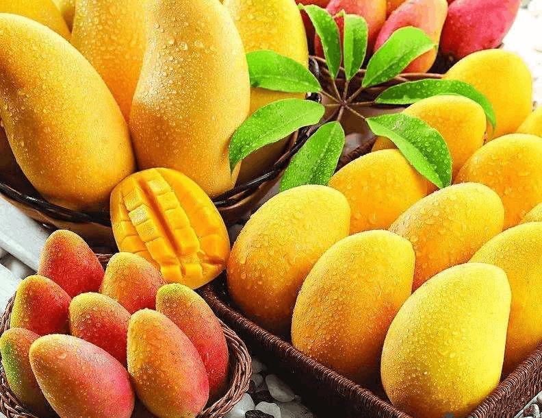 芒果盛宴 十款夏日甜品轻松学