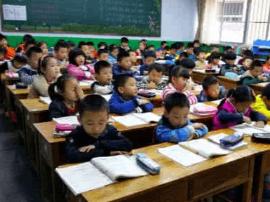 山东今年起小学一年级班额不超45人 学籍信息来监测