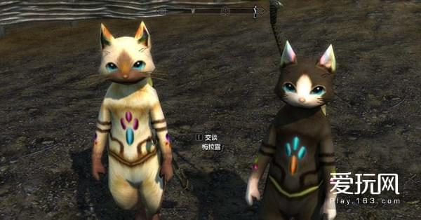 玩家们甚至在其他游戏中做了艾露猫与梅露猫的MOD
