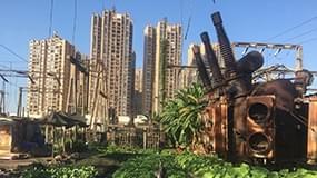 南宁废弃电厂沦为菜园