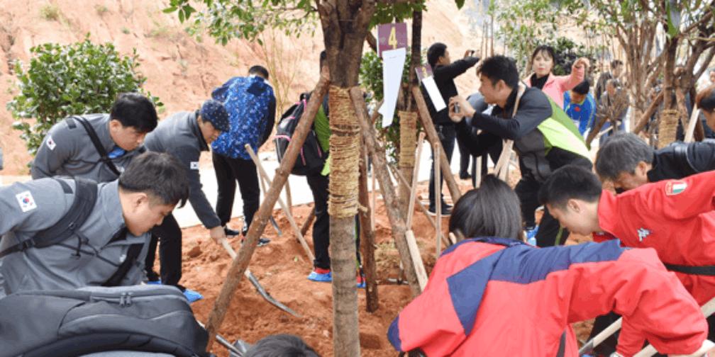 寿岳共植中韩友谊林 韩国少年探访衡阳文化之旅