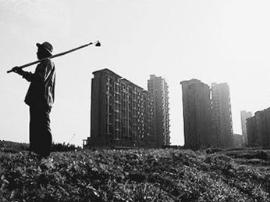 张红宇详解土地制度改革:与联产承包有四方面区别