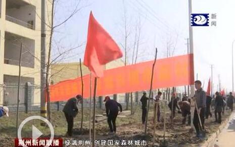 植树节,荆州开发区植树忙,全力创建国家森林城市