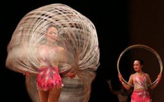 中国残疾人艺术家献艺美国休斯敦