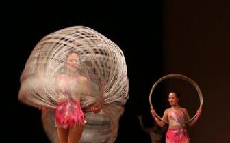 北京残疾人艺术家献艺美国休斯敦 促文化交流