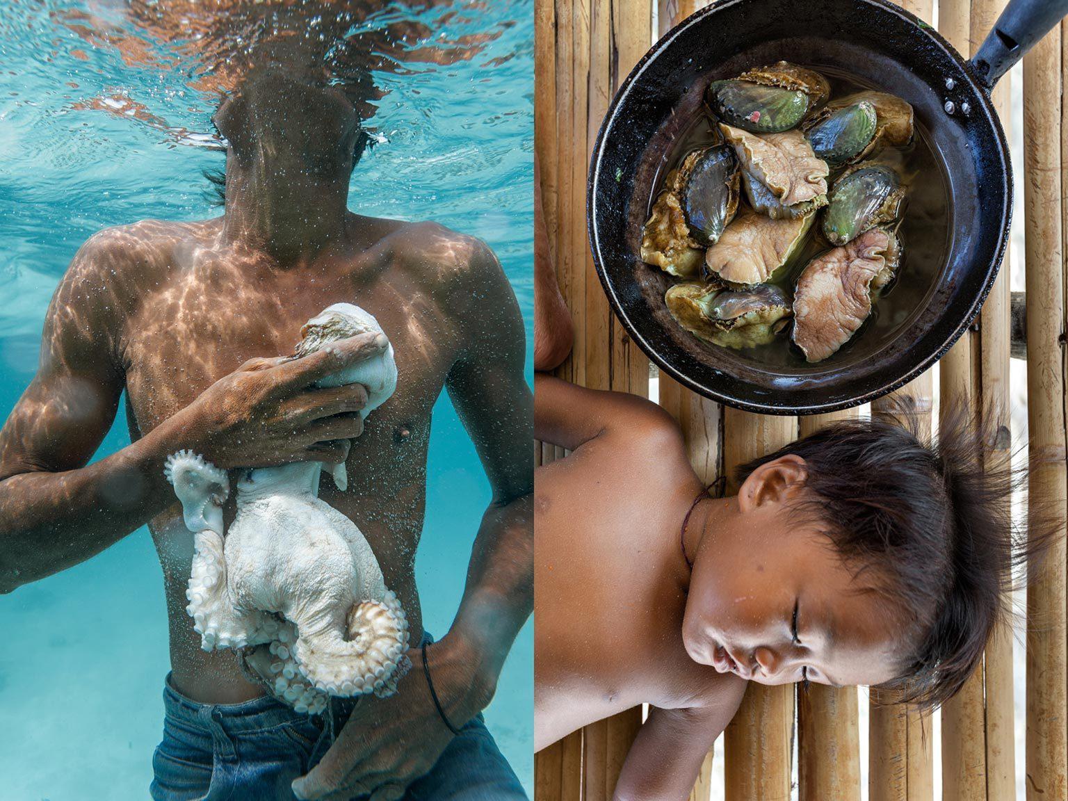 吃肉?吃素?如果人类像祖先那样饮食更健康吗?