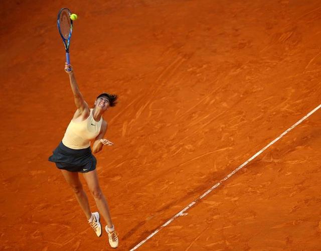 WTA罗马-数据利好 莎拉波娃有望再进一步