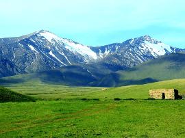 新疆托克逊县黑山草原:被夏日酷热遗忘的胜地