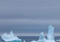 报告称人类活动是导致气候变暖的单一因素