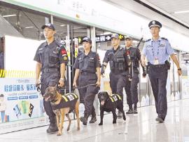 """警犬巡逻地铁站 颜值爆表 市民大呼""""好帅啊"""""""