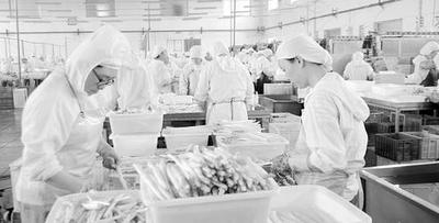 带你见识山西特色蔬菜罐头的加工场景